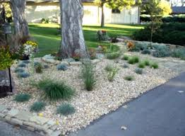 32 best landscaping with lava rock for dee images on pinterest