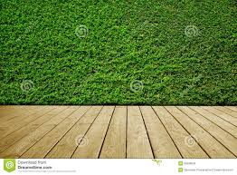 Wooden Floor by Green Leaves Wall Background And Brown Wooden Floor Stock Photo