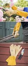 flower gardening 101 top gifts for gardeners 2013 home outdoor decoration