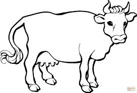 gambar gambar sketsa hewan sapi mania kartun binatang di rebanas