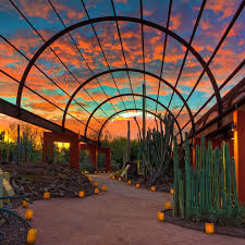 Scottsdale Az Botanical Gardens Where To The Sunset In Scottsdale Travel Leisure
