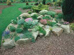 Japanese Rock Garden Plants 12 Best Rock Garden Images On Pinterest Landscaping Ideas Diy