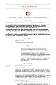 Public Works Director Resume Business Development Director Resume Samples Visualcv Resume