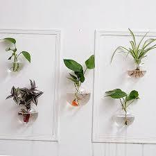 set of 5 bubble terrarium glass wall vase indoor wall mounted