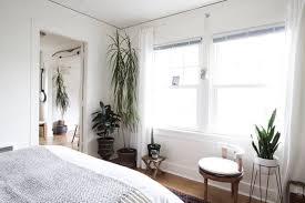 How To Arrange Indoor Plants by Happier Houseplants How To Keep Indoor Plants Healthy Apartment