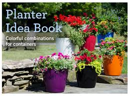 Planter Garden Ideas Planter Idea Book Container Gardens Pots Planters Windowboxes