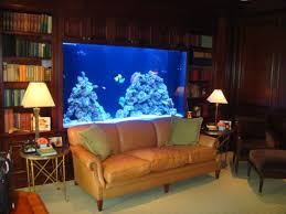 My Home Decoration This Will Be In My Home Office Library Someday Fish Tank