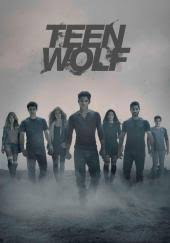 teen wolf tv series 2011 imdb teen wolf tv review