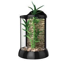 terrariums biobubble pets