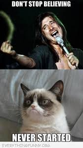 Best Memes Of 2010 - best of grumpy cat memes archives everything funny