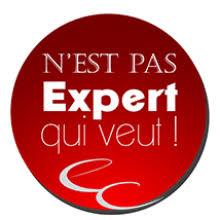 chambre des experts comptables ordre des experts comptables marseille conseil supérieur de l