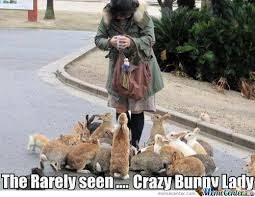 Crazy Dog Lady Meme - observe the crazy bunny lady in her natural environment by