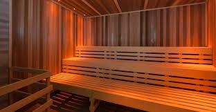 dalesauna commercial sauna u0026 steam rooms