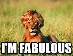 I Am Fabulous Meme - i m fabulous fab lion meme on memegen