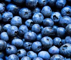 the elimination food plan a success story u2014 blue monarch health pllc