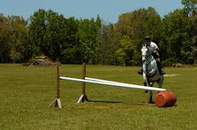 licensetobuild com morgan rowsell build simple cross country fences for eventing