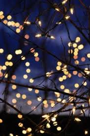 christmas lights quotes for all