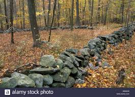 Old stone wall in autumn forest connecticut stock photo royalty