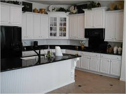 paint old kitchen cabinets cool painted kitchen cabinets with black appliances inspirational