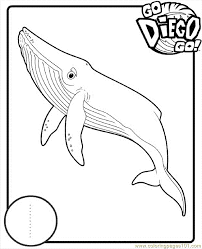 Diego 09 Coloring Page Free Go Diego Go Coloring Pages Go Diego Go Coloring Pages