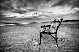 beach bench bench