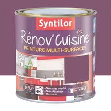 meuble de cuisine aubergine peinture rénov cuisine syntilor violet aubergine 0 5 l leroy
