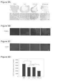 patent us8541543 peptides specific for hepatocellular carcinoma