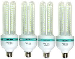 Light Bulbs International Photo Light Bulbs Alzo Digital