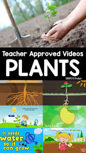 videos about plants simply kinder
