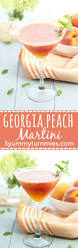martini raspberry best 25 martini recipes ideas on pinterest orange wedding gift