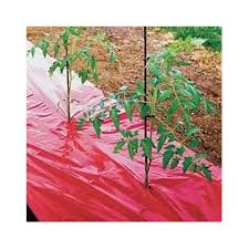 amazon com black plastic mulch 4ft x 600ft 1 0 mil embossed by