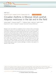 Mexican Blind Cave Fish Circadian Rhythms In Mexican Blind Cavefish Astyanax Mexicanus In