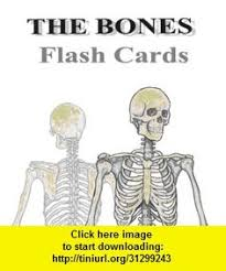 Human Anatomy Flashcards A Lab Practical 2 Left Or Right Bones Flashcards Quizlet