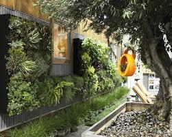 185 best succulents images on pinterest landscaping gardening
