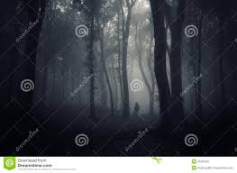 ghost in a dark scary mysterious forest on halloween stock photo