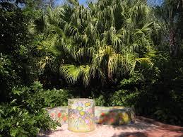 Largo Botanical Garden Hiking In Clearwater Florida Hikes