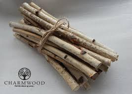 30 birch sticks wood crafts wooden sticks birch wood