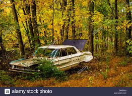 auto junkyard kingston ny old car and autumn color in a junkyard stock photo royalty free