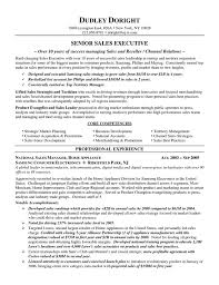 sales executive resume channel sales resume exle resume exles description and