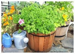 Potted Herb Garden Ideas Container Herb Garden Kit Nightcore Club