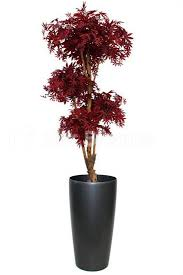 shop artificial luxury burgundy acer bonsai tree 175cm from