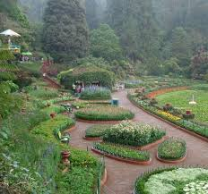 Botanical Gardens Highland Park Botanical Garden Photos Ooty Pictures Images Gallery Justdial