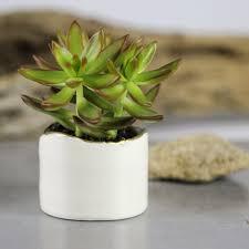 Modern White Planter by White Ceramic Planter Set Of 2 Modern Triangle Shaped White