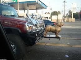 custom truck ornament bull hummer