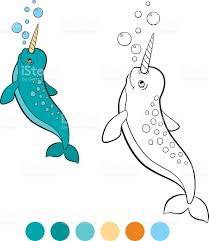 coloring pages narwhal