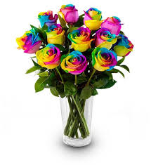 multicolored roses rainbow roses farm fresh avas flowers