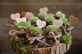succulent wedding favors potted succulent wedding favor