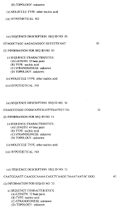 patent ep0974660a1 newcastle disease virus infectious clones