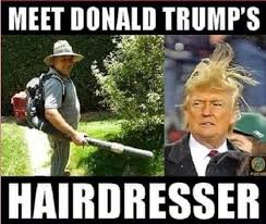 Funny Appropriate Memes - 37 funny photos of donald trumph mojly