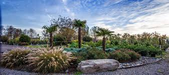coastal landscapes and nursery commercial residential nursery